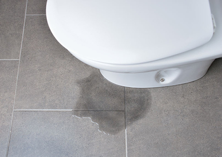 Temporary toilet leak fixes